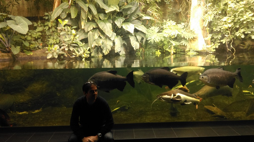 Finding time to visit the Berlin Zoo and Aquarium the day after the marathon